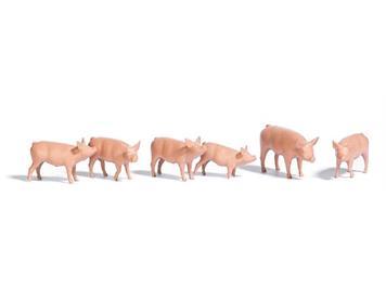 Busch 1172 Sechs Schweine HO