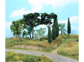 HEKI 1774 Mediterranes Baumset, 11 Bäume