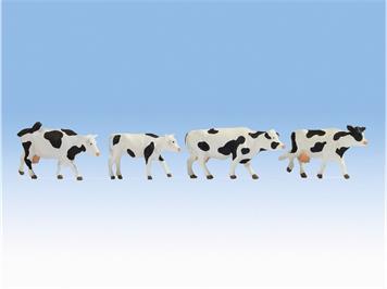 Noch 17900 Spur 0 Kühe, schwarz-weiss