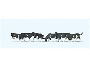 Preiser 79228 Kühe schwarz gefleckt N