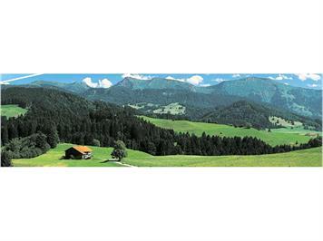 Vollmer Hintergrund 80 x 300 Allgäu