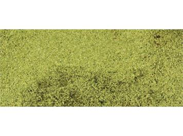 HEKI 1675 kreativ Blätterflor 28 x 14 cm hellgrün