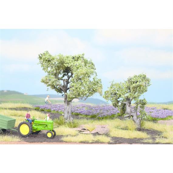 NOCH 21995 Olivenbäume HO