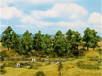 Noch 24600 Laubbäume, 8 Stück, 10 - 14 cm hoch, H0