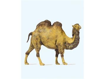 Preiser 29506 Kamel HO