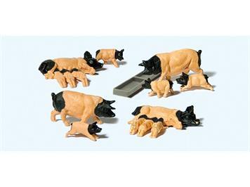 Preiser 10149 Schwäbisch-Hällische Schweine HO