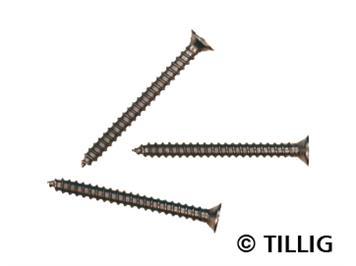 Tillig 08976 Mini-Holzschrauben (100 Stk.)